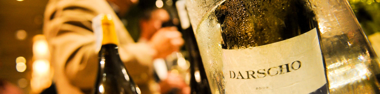 Weingut Velich Darscho