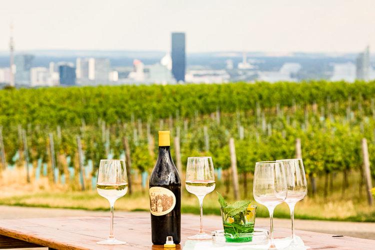 Foto: Fritz Wieninger serviert seine ausgezeichneten Weine und kalte Speisen © Weingut Wieninger