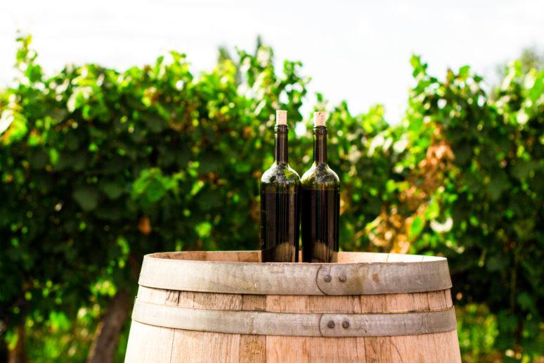 Wein des Monats Emmerich Knoll