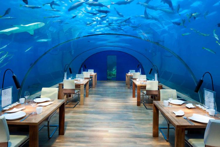underwater-restaurant-maldives-conrad